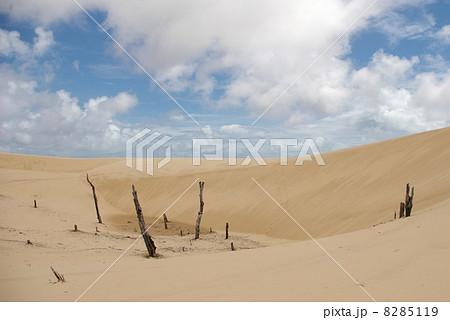 レンソイス・マラニャンセス国立公園 8285119