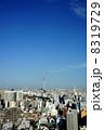 東京スカイツリー スカイツリー 町並みの写真 8319729