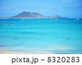 カイルアビーチ 8320283