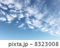 秋 雲 青空の写真 8323008