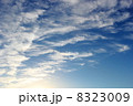秋 雲 青空の写真 8323009