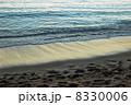 ワイキキビーチの波打ち際1 8330006