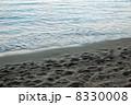 ワイキキビーチの波打ち際3 8330008