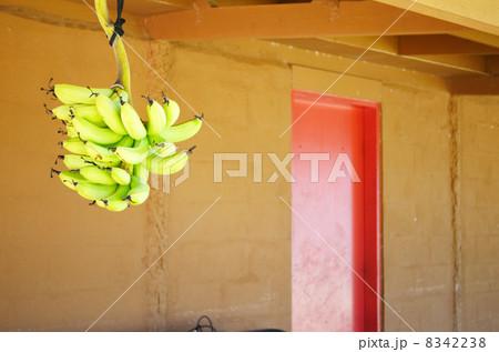 バナナ 吊るす 8342238