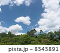 夏の高原6 8343891