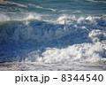 潮 波 海の写真 8344540