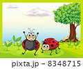 Smiling ladybugs 8348715