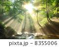 兵庫県新温泉町 光芒と滝 8355006