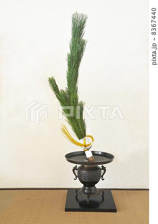 正月の松の生け花 8367440