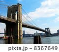 ブルックリンブリッジ 8367649