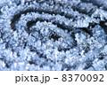 冬の銀河 8370092