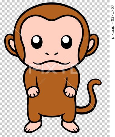 一隻猴子 8371767