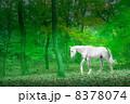 白馬 8378074