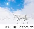 白馬 8378076