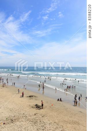 夏のロサンゼルス近郊、休日はビーチで遊ぼう! 8388210