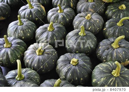 かぼちゃ 8407970