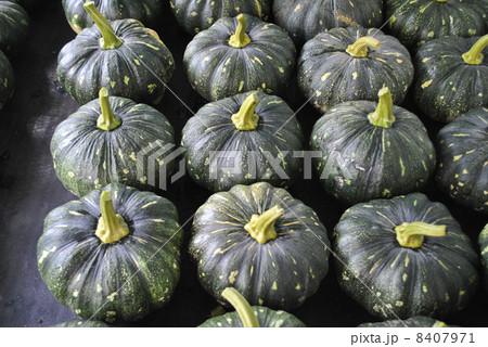 かぼちゃ 8407971