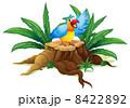A colorful parrot above a stump 8422892