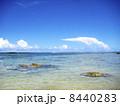 グアムの浜辺 8440283