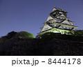 大阪城 8444178