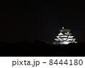 夜の大阪城 8444180