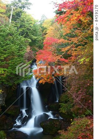 竜頭の滝 8459170