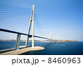 VLADIVOSTOK - APRIL 28 : cable-stayed bridge to Russian Island , on april 28, 2013, Vladivostok. Rus 8460963