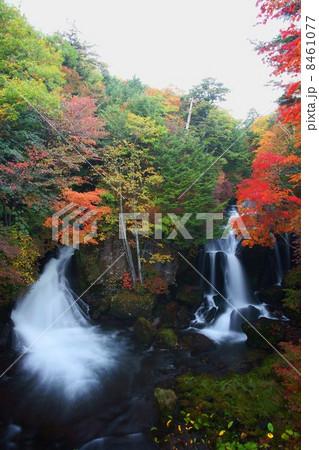 竜頭の滝 8461077