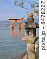 安芸の宮島と石灯籠 8478227