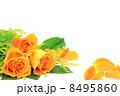 薔薇 8495860