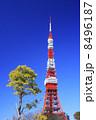 東京タワー タワー 塔の写真 8496187