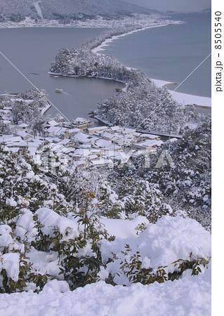 日本三景」天橋立の雪景色 8505540