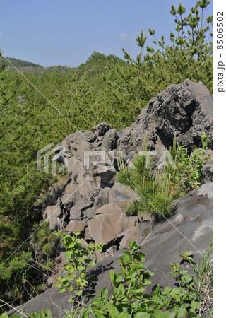 鹿児島 桜島の溶岩 8506502