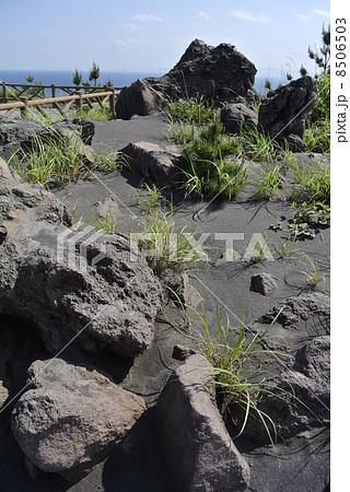鹿児島 桜島の溶岩 8506503