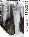 たろし滝(縦) 8508242