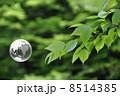 地球と自然 8514385