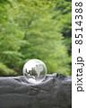 地球と自然 8514388