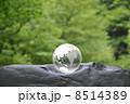 地球と自然 8514389