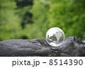 地球と自然 8514390