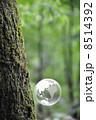 地球と自然 8514392