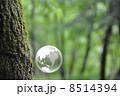 地球と自然 8514394