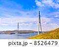 Cable-stayed bridge to Russian Island. Vladivostok. Russia. 8526479