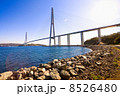 Cable-stayed bridge to Russian Island. Vladivostok. Russia. 8526480