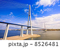 Cable-stayed bridge to Russian Island. Vladivostok. Russia. 8526481