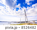 Cable-stayed bridge to Russian Island. Vladivostok. Russia. 8526482