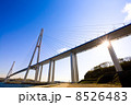 Cable-stayed bridge to Russian Island. Vladivostok. Russia. 8526483