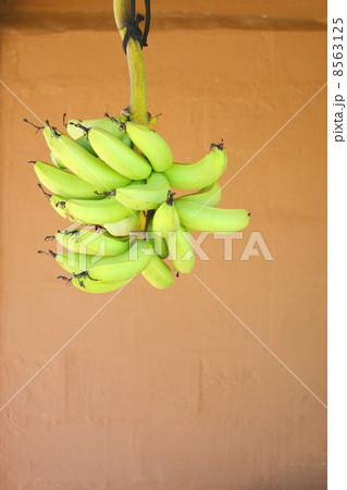 バナナ 吊るす 8563125