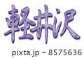 軽井沢パープル 8575636