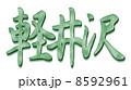 軽井沢グリーン 8592961