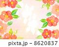 椿 8620837